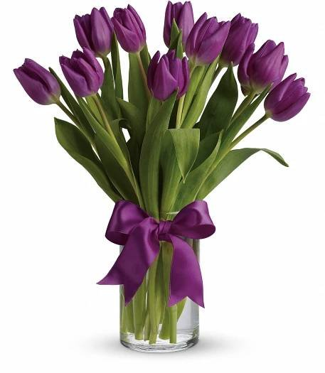 Kytice 15 fialových tulipánů